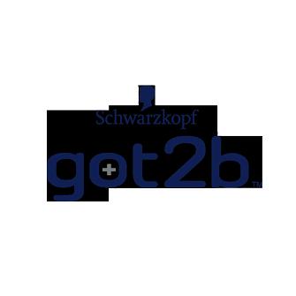 Schwarzkopf got2b